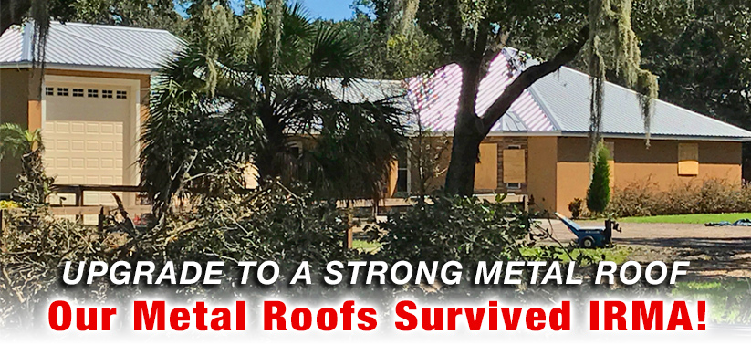 metal roof hurricane replace shingle roof